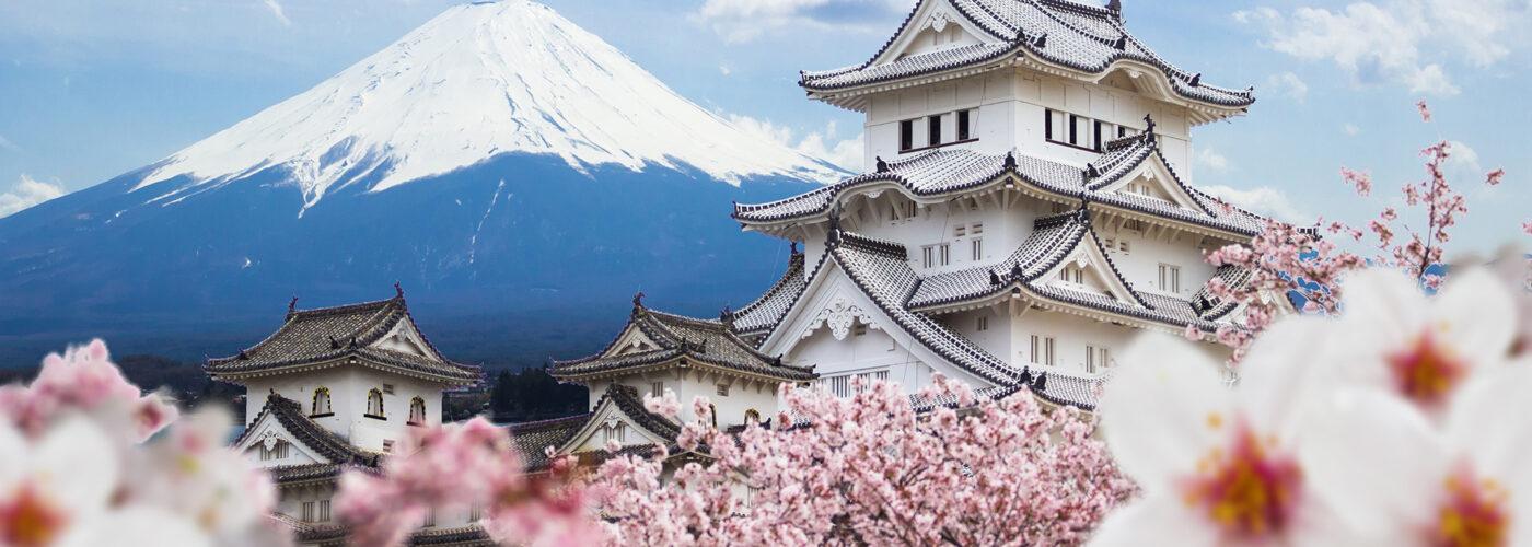 Welcome to Japan Universities Information Portal